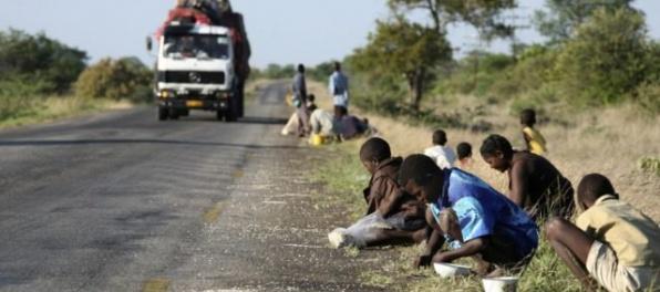 Deti rozbehli v Zimbabwe výnosný biznis, predávajú pečené myši