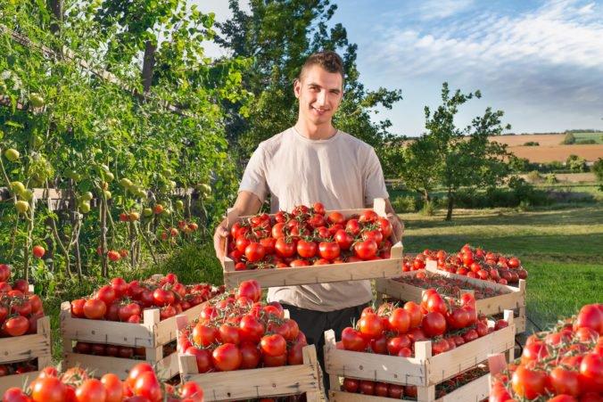 Slováci nakupujú viac slovenskej zeleniny a ovocia ako vlani