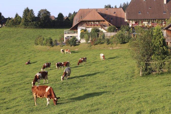 Švajčiarski voliči podľa odhadov v referende odmietli zvýšenie ochrany domácich farmárov