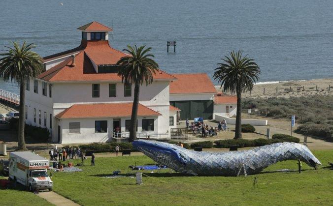 Umelci reagujú na znečistenie oceánov, z plastového odpadu vytvorili dlhú sochu vráskavca