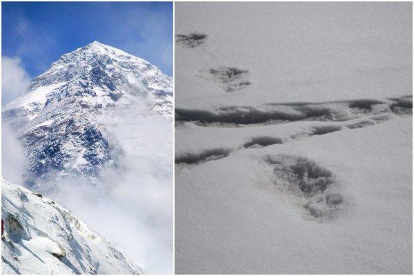 Foto: V Himalájach našli záhadné stopy, podľa indickej armády patria Yetimu