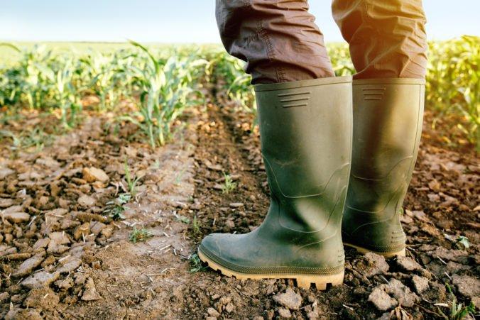 Poslanci schválili novelu o podpore v pôdohospodárstve, ktorá reflektuje zistenia Európskej komisie