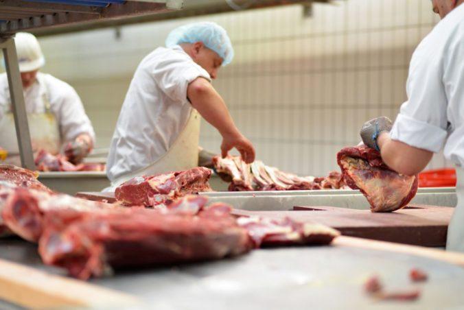 Škandál s hovädzím mäsom prinútil Poľsko posilniť kontrolu vlastných potravín