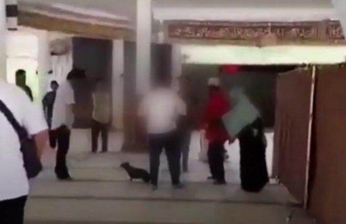Video: Žena vbehla do mešity so psom, hrozí jej najvyšší možný trest za rúhanie sa