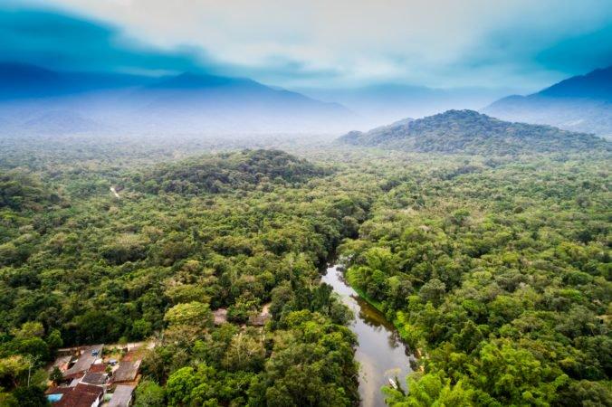 Každú minútu zmizne amazonský prales vo veľkosti futbalového ihriska