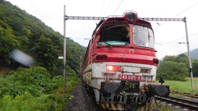 Foto: Vlak neďaleko Hronskej Dúbravy narazil v silnom daždi do stromu