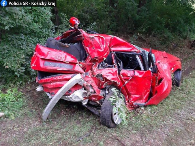 Foto: Po hrozivo vyzerajúcej nehode ostala z auta len kopa šrotu, mladík vletel medzi stromy