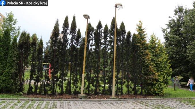 Foto: Plamene poškodili stromy a pouličné osvetlenie v Košiciach, oheň založil osemročný chlapec