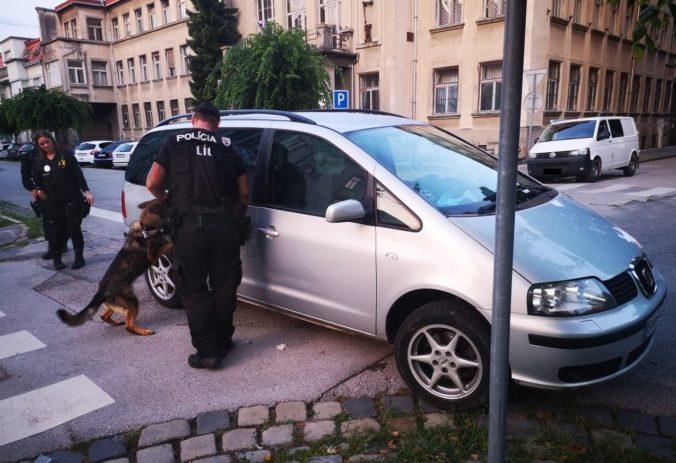 Foto: Policajná sučka zacítila pri kontrole vodiča drogy, v ruksaku našli puzdro so skladačkami