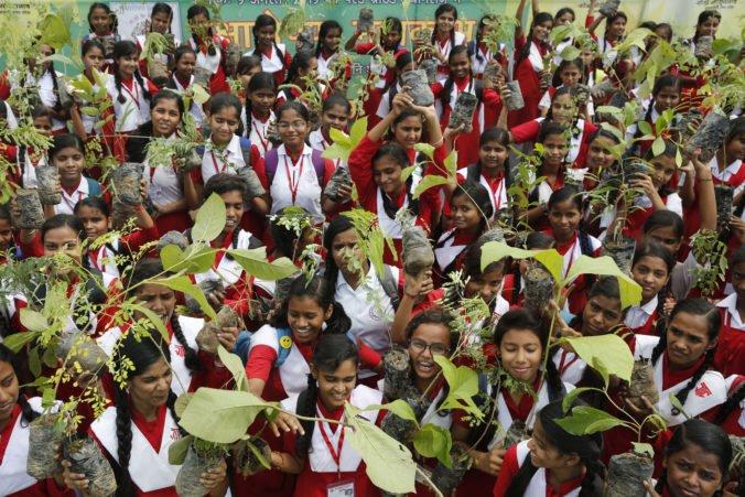 Indovia vysadili v štáte Uttarpradéš za jeden deň dvestodvadsať miliónov stromov