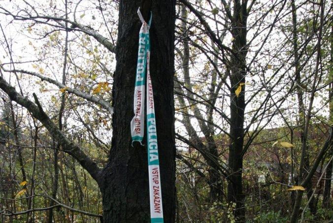 V lese nad sídliskom Sásová objavili kostru muža, polícia začala trestné stíhanie