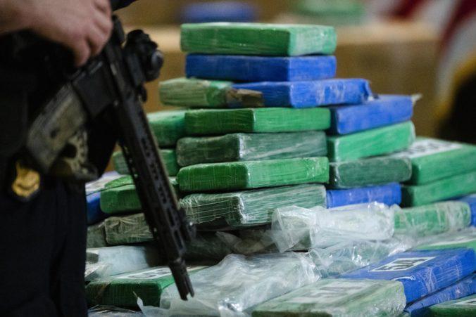 V prístave Le Havre objavili viac ako tonu kokaínu, bol ukrytý pod zásielkou palmových sŕdc