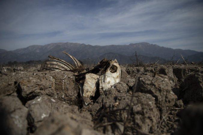 Čile sužuje najhoršie sucho za uplynulé dekády, vláda vyhlásila poľnohospodársku krízu