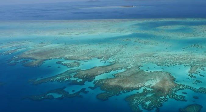 Video: Vyhliadky pre Veľkú koralovú bariéru sú veľmi zlé, najviac ju ohrozuje globálne otepľovanie