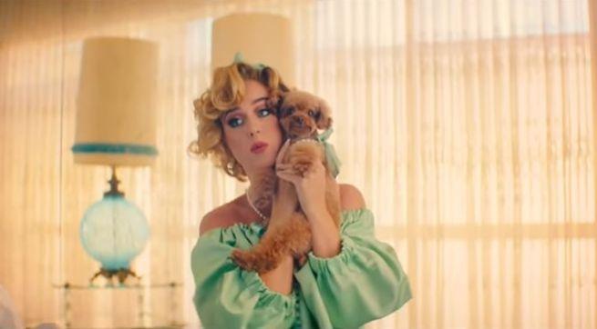 Katy Perry zverejnila videoklip k piesni Small Talk, v ktorom si zahral aj jej pudlík Nugget