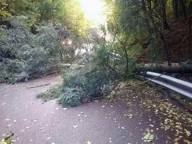 Foto: Slovensko bičuje silný vietor, tisícky odberných miest sú bez elektriny
