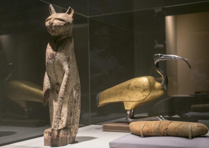 Archeológovia v Egypte objavili ojedinelý nález, vykopali múmiu nezvyčajne veľkého zvieraťa