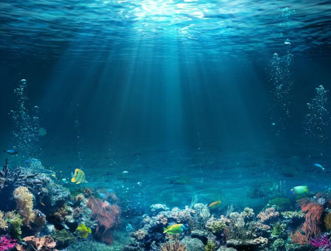 Oceány prichádzajú pre klimatické zmeny a živinové znečistenie o kyslík, varujú odborníci