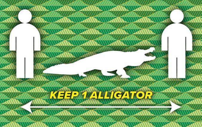 Aj dĺžka sedačky či aligátora môže ukázať, aký odstup treba dodržiavať v čase pandémie koronavírusu