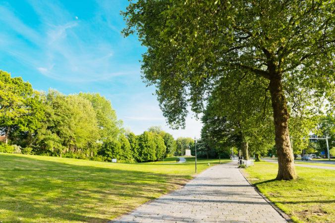 Po parku budú rozhadzovať slepačí hnoj, opatrením chcú zabrániť ľuďom zhromažďovať sa