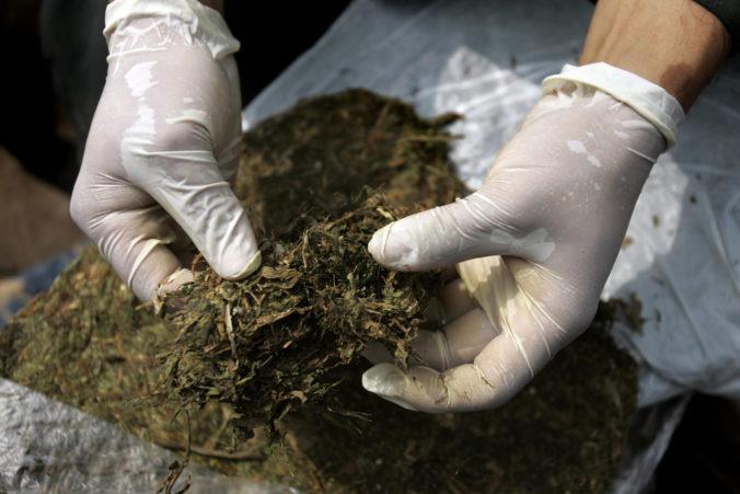 Belgická polícia zhabala pri razii na bruselskom trhu jedenásť a pol tony marihuany