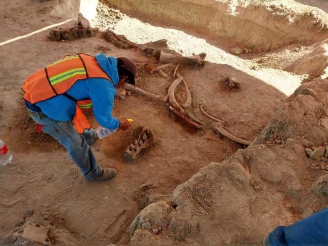Archeológovia objavili na stavbe letiska pri hlavnom meste Mexika kosti desiatok mamutov