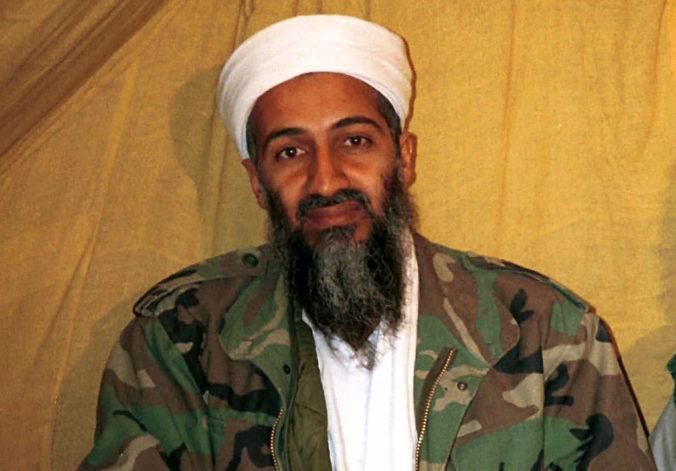 Bin Ládin je podľa premiéra Pakistanu mučeník, spojenectvo s Američanmi označil za chybu