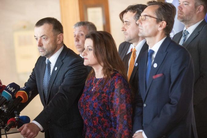 Personálne zmeny v Demokratickej strane. Novým predsedom Rajnoha a členmi ostávajú aj odídenci z SaS