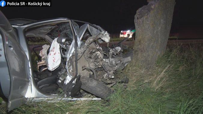 Vodič sa zrejme nevenoval riadeniu, náraz do stromu skončil tragicky