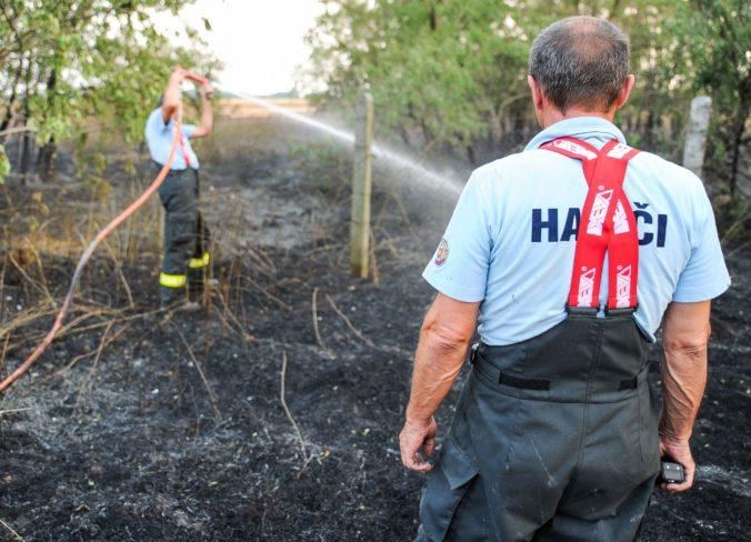 Hasiči upozorňujú na zvýšený výskyt požiarov v prírodnom prostredí, platia viaceré zákazy