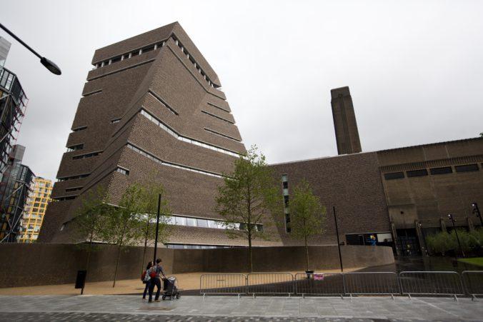 Mladík z Británie, ktorý poškodil obraz Pabla Picassa, si odsedí za mrežami 18 mesiacov