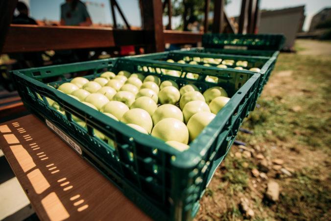 Kaufland prinesie čerstvé ovocie a zeleninu viac ako 28-tisíc školákom na celom Slovensku