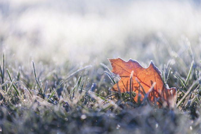 Meteorológovia varujú pred prízemnými mrazmi, udrieť môžu v Popradskom okrese