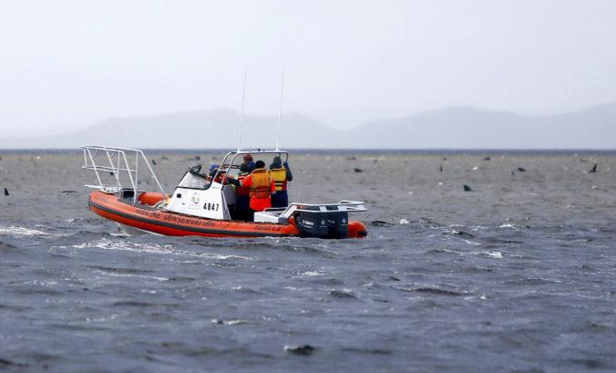 Záchranárom sa podarilo dostať späť do mora takmer 90 veľrýb. Zvažujú, čo s mŕtvymi telami (video)