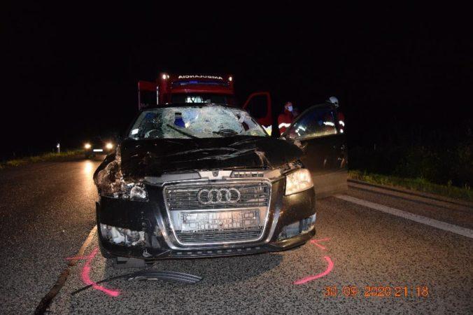 Vodič Audi sa čelne zrazil s jelenicou, so zraneniami ho previezli do nemocnice (foto)