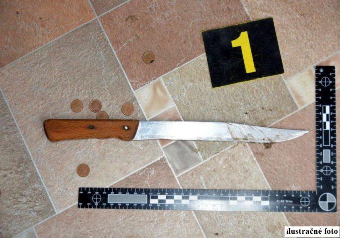 Mladého Košičana obvinili z pokusu o vraždu, v chatke surovo dobodal iného muža