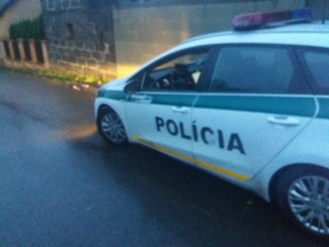 V rodinnom dome na Liptove našli dobodaného starčeka, zadržali podozrivého (foto)