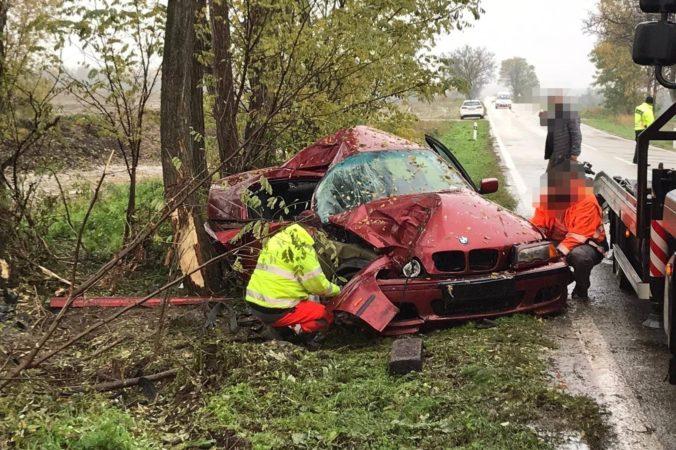 BMW zišlo z cesty a narazilo do stromu, matka a jej dve deti skončili v nemocnici