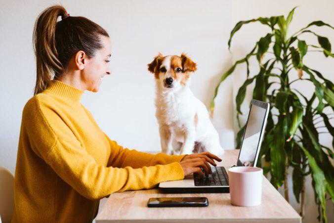 Zákonník práce spresní podmienky práce z domu, zamestnávateľom vzniknú nové povinnosti