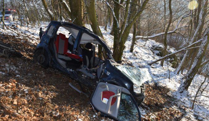 Vodičky nezvládli jazdu a skončili v strome, šmykľavé cesty potrápili aj ďalších šoférov (foto)