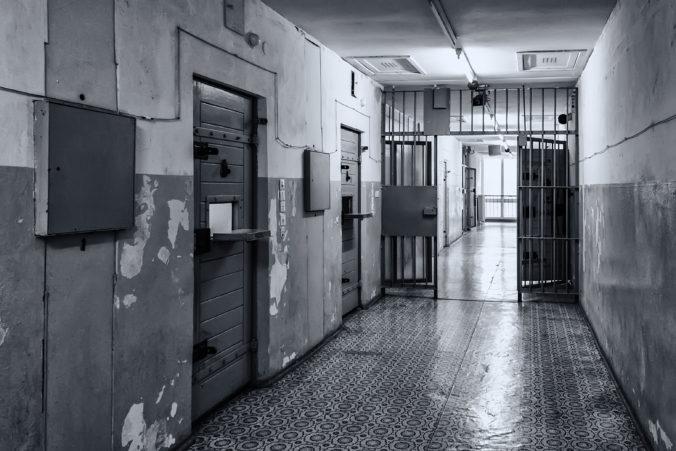 Neprimerane dlhá väzba a úmrtia pri jej výkone sú podľa advokátov neudržateľným stavom
