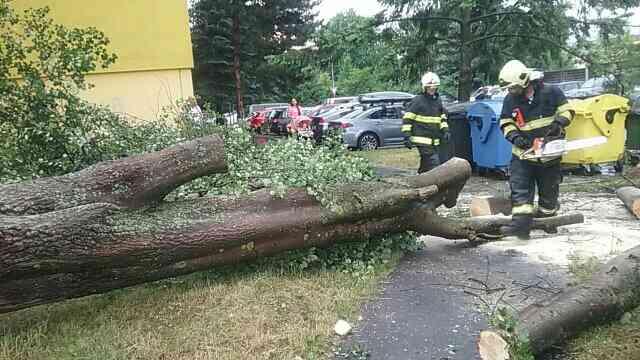 Prešovský kraj bojoval s búrkami a silným vetrom, mimoriadna situácia je v šiestich obciach