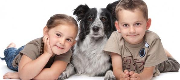 10 plemien psov vhodných pre deti